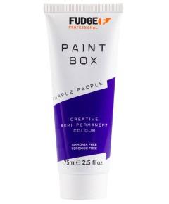 Paint Box Creative Semi Permanent Hair Colour Purple People