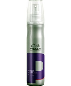 Professionals Perfect Setting Wet Blow Dry Lotion