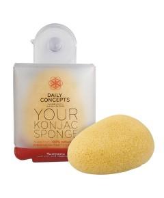 Daily Concepts Your Konjac Sponge